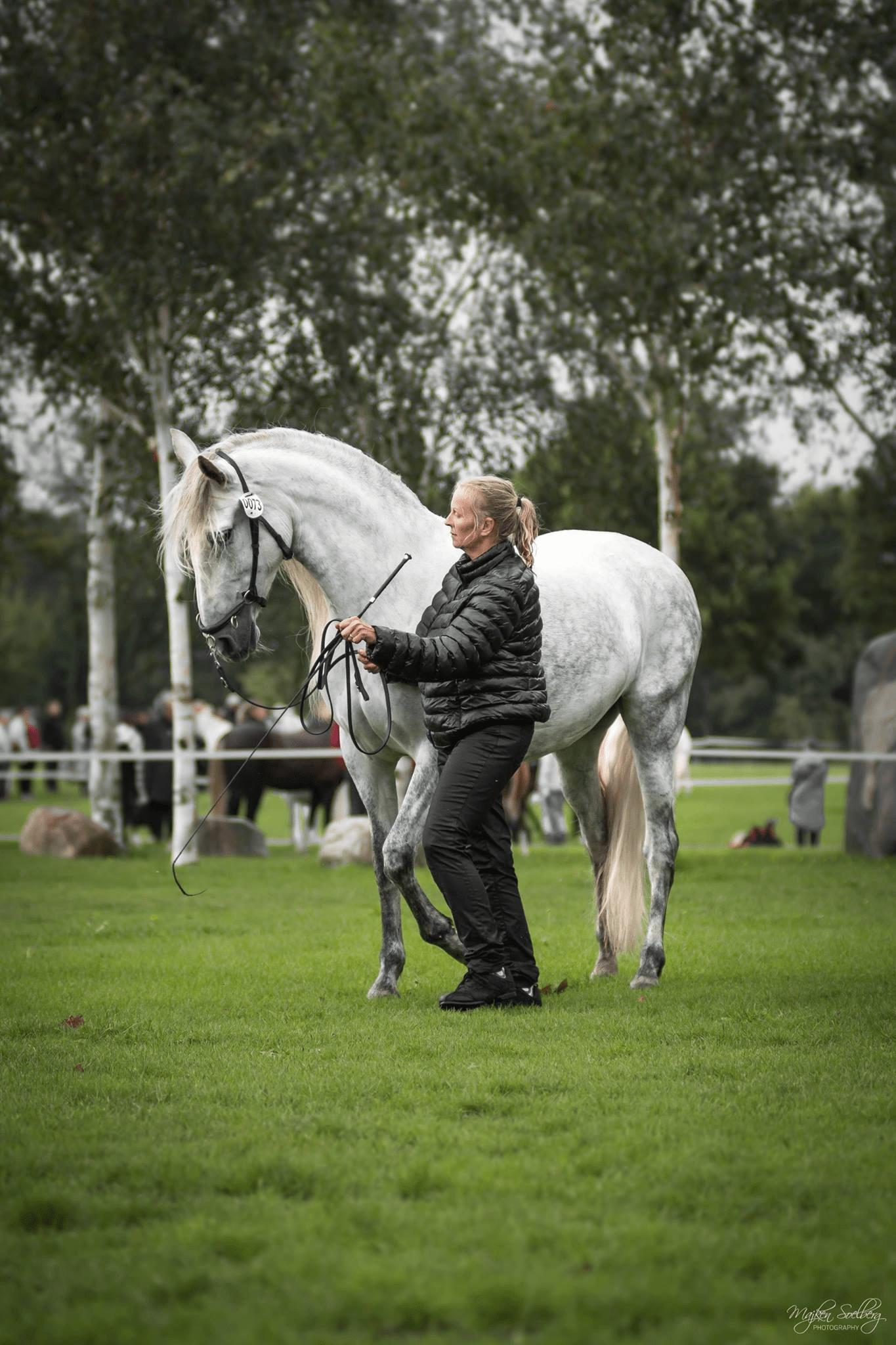 Tina med hest