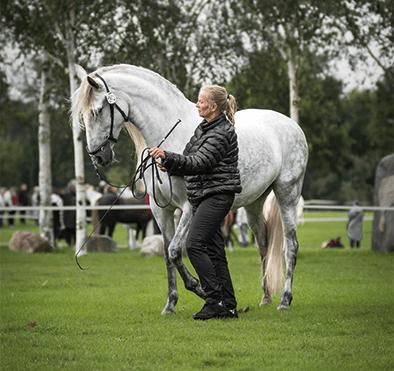 Tina træner med hesten